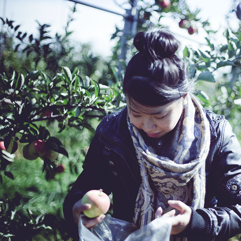 asian-girl-apple-picking
