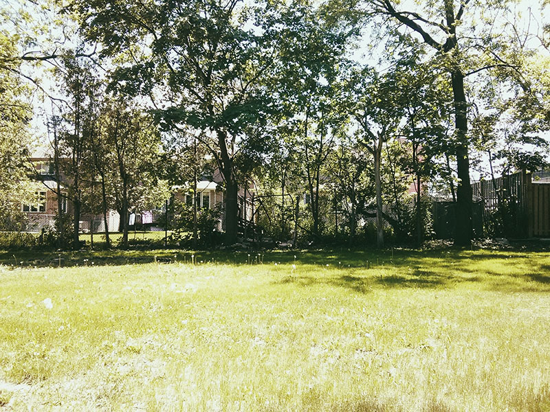 gorgeous-day-in-the-garden-elise-and-thomas