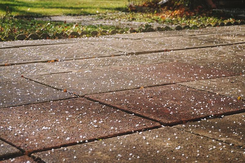 hail-in-november-toronto-canada